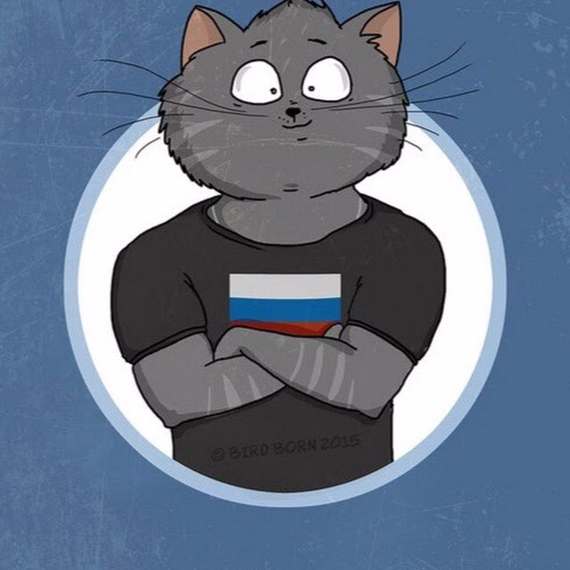Картинки котов на стим, смешные картинки
